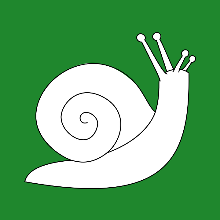 snail used as symbol for slow golf pace